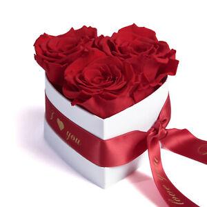 I Love You Geschenk Rosenbox Infinity Herz ewige Rosen konserviert Valentinstag