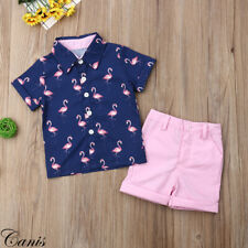 Fashion Toddler Kids Baby Boys Clothes Outfits Sets Short T-Shirt + Pants Tops