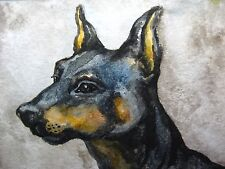 Watercolor Painting Dog Breed Doberman Pinscher Home Pet Animals Aceo Art