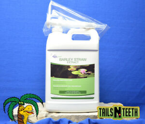 Aquascape Concentrated Barley Straw Extract 3.78L ~ Naturally Clears Pond Water
