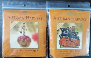 10x Bead Kit  Autumn: Apples/Kitties/Pumpkins/Birdhouse/Witch/Turkey-AK174