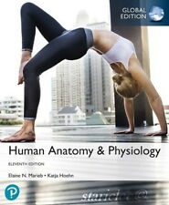 NEW 3 Days AUS Human Anatomy and Physiology 11E Katja Hoehn Marieb 11th Edition