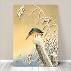 "Beautiful Japanese Bird Art ~ CANVAS PRINT 8x12"" ~ Kingfisher Hunting"