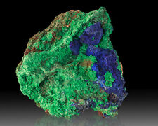 """3.3"""" Vivid Navy Blue AZURITE Crystals on Bright Green MALACHITE Morocco for sale"""