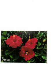 Vintage Postcard, USA,  Hibiscus, Hawaii,  Stamped 94