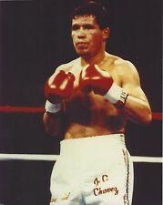 julio cesar chavez 8x10 photo boxing picture color