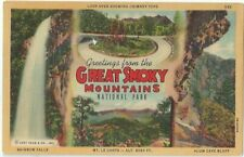 Greetings Great Smoky National Park Vintage Postcard Tennessee Linen