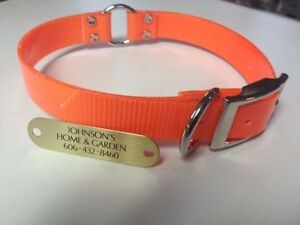 "1"" Plastic Coated Nylon Orange Safety Dog Collar W/Brass Diamond Engraved Plate"