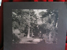 Vintage Real  Photo of  Del Monte, Calif  The  Carmel  MISSION