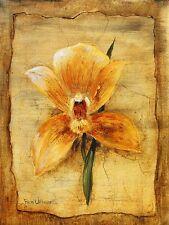 Rian Withaar Spring Impression II Poster Kunstdruck Bild 40x30cm