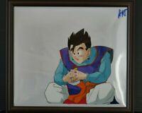 japan Dragon Ball: Son Gohan Cel (2)