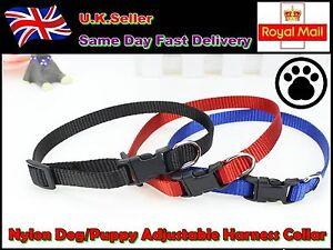 Robust Nylon Dog Puppy Adjustable Harness Collar and Lead Leash