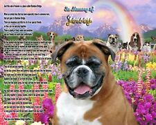 Rainbow Bridge Poem Boxer Dog Memorial Picture Personalized w/Pet's Name