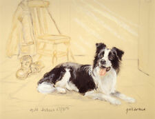 BORDER COLLIE WORKING SHEEPDOG DOG FINE ART LIMITED EDITION PRINT