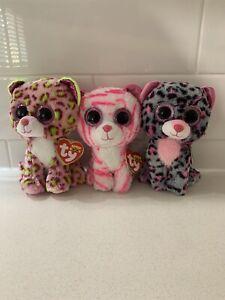 "Tasha Cat Lainey Cat Asia Cat 6"" 15cm BNWT Ty Beanie Boos"