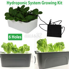Plant Indoor Hydroponic System Grow Water Solar Deep Culture Bubble Garden Home