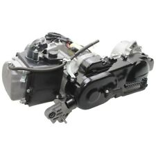 Motor komplett 10 Zoll Rex CAPRIOLO Rs450 RS 450 500 139qmb