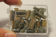 Boxed Fossil Stem Crinoids Free Shipping 250 million Years old