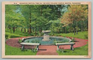 Bristol Tennessee~Dogwood Festival Time On King College Campus~Vintage Postcard