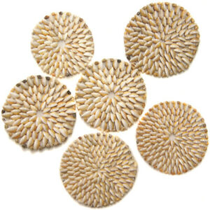 Cowrie Shell Placemat 6 inch Beach Decor Table Setting; genuine Cowry seashells