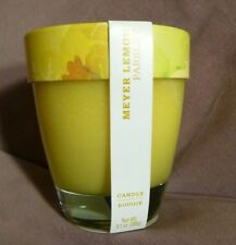 Williams Sonoma Meyer Lemon Parsley Essential Oil Candle 9.1 oz New 45Hours Burn