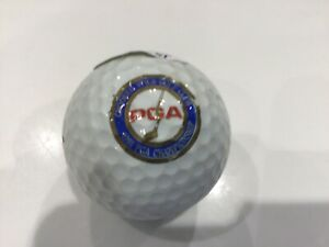 JOHN DALY signed 1991 PGAl logo golf ball JSA authenticated FREE SHIPPING