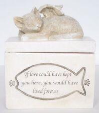 Angel Wings Sleeping Cat / Kitten Pet Memorial Box Ashes / Trinkets