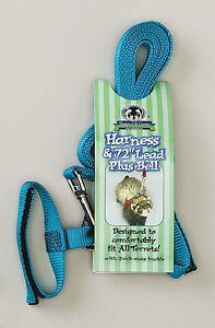 Ferret Harness w/ Bell &  72 inch Lead - Sheppard & Greene Harness