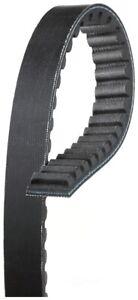 Accessory Drive Belt-Special Belt Gates 6013