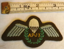 Military Assistant Parachute Jump Instructor AJPI Wings Army Cloth Badge (3095
