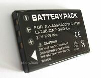 Battery for INSIGNIA NS-DV1080P NS-DV720P NS-DCC5HB09 NSDCC5HB09 5.0MP Camcorder
