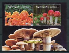 Central African Rep 2017 CTO funghi 2 V M/S FLY AGARICO FUNGHI STAMPS