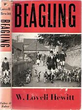 BEAGLING by W.Lovell Hewitt (chapter on Beagles in USA) 1960 pb Faber & Faber