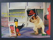 Corn Nuts Winky The Crow Show Pug Dog Color Promo Advertising Postcard 2000