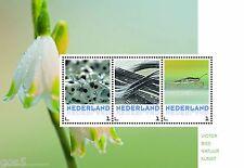 Netherland 2016 Flowers -nature m/s 1 mnh/postfris us