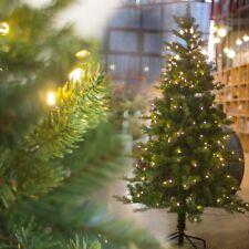 Weihnachtsbaum Kaufen Echt.Echter Weihnachtsbaum Günstig Kaufen Ebay