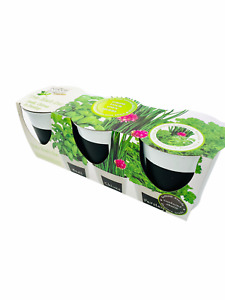 Set of 3 Indoor Trio Basil Chives Parsley Seeds Compost Grow Your Own Herbs Pots