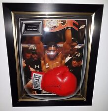 LUXURY DOME BOXING GLOVE FRAMING SERVICE FRAMES * We frame your GLOVE for you *