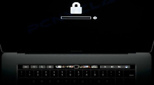 APPLE  MACBOOK EFI LOCK,PERMANENT LOCK REMOVAL,2015-2017 MAC PRO/AIR/IMAC/MINI