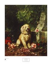 Louis-Eugene Lambert Amateur Gardener Poster Kunstdruck Bild 66x54cm - Portofrei