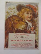 "Victorian Capillaris Metal Sign Nip Advertising Repro 8 1/4"" x 6"""
