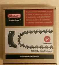 Genuine Oregon CS250 Replacement PowerNow Chainsaw Chain & GrinderShoe 554873 A4