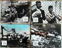 8  Original Aushangfotos JERRY LEWIS - Jerry außer Rand und Band