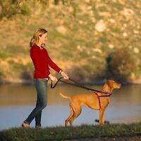 Dog Anti Pull Harness Halti Non Collar Padded Adjustable Strap Black Red