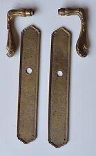 2 Plaques de Propreté+ poignées Bronze Style Louis XV