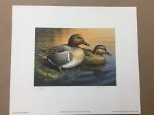 Sam Timm Green-Winged Teal Couple 1996 Wisconsin Duck Stamp Print