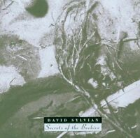 David Sylvian - Secrets Of The Beehive NEW CD