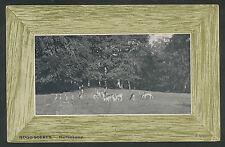 Hoog-Soeren  Hertenkamp  1907