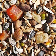 Nourriture noix pour oiseau