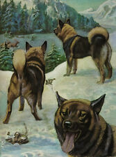 ELKHOUND CHARMING DOG GREETINGS NOTE CARD BEAUTIFUL DOGS IN RURAL SETTING